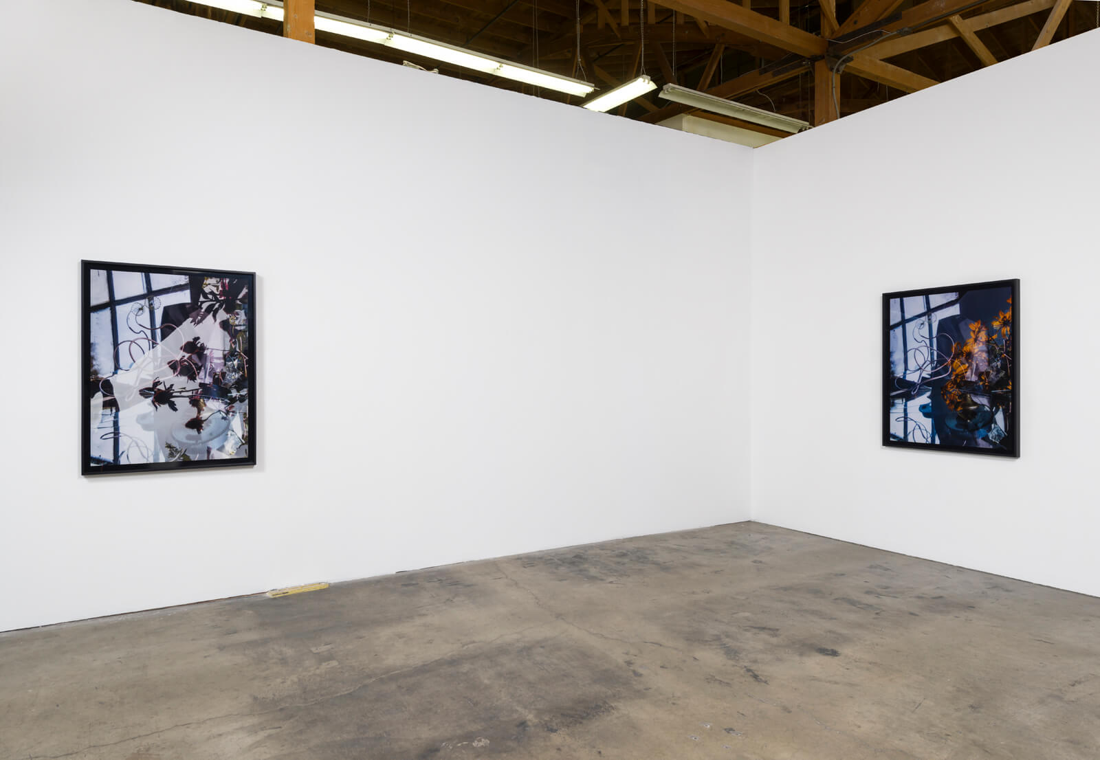 _c_willa-nasatir-installation-view-ghebaly-gallery-2016