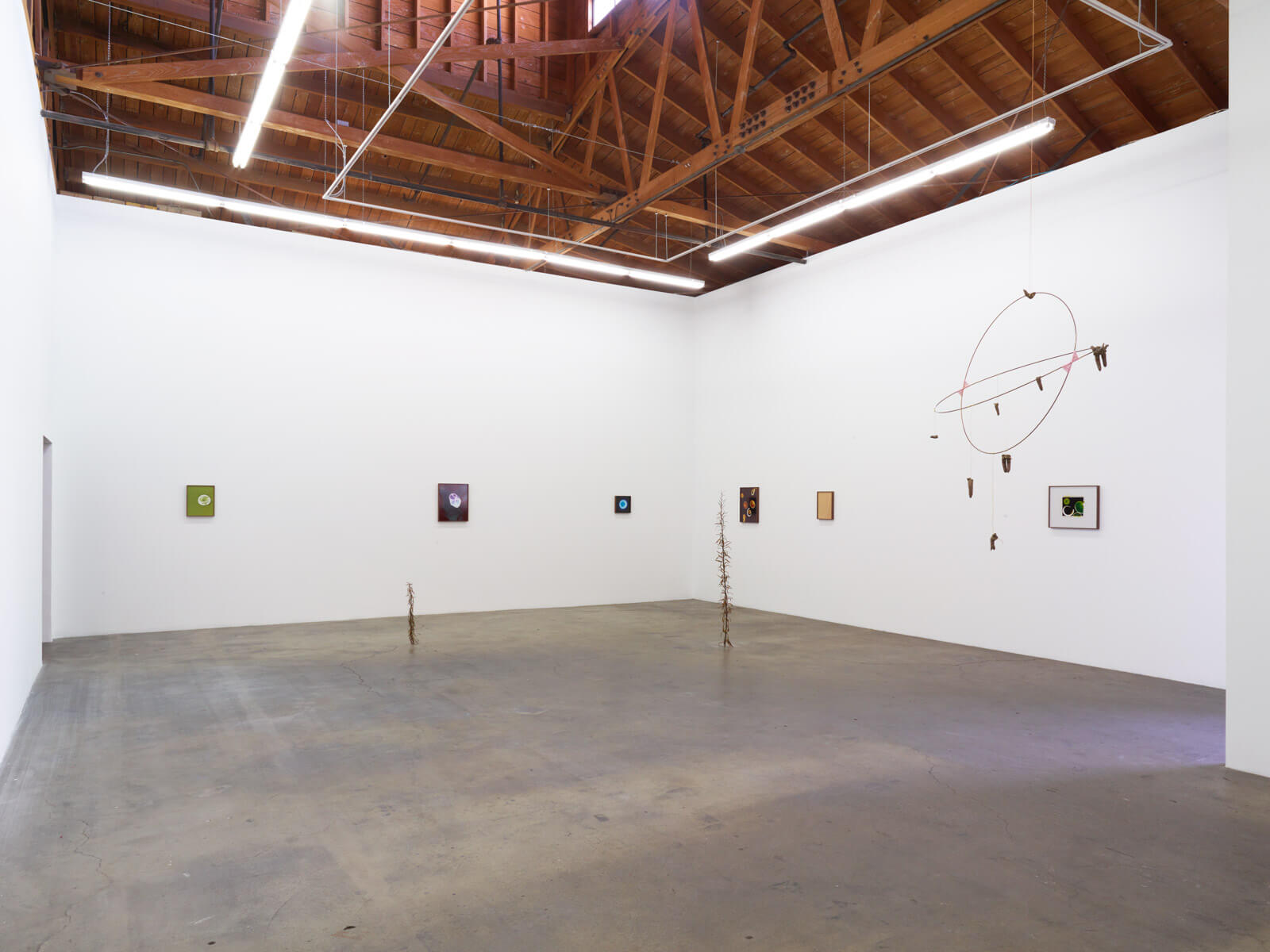 1_Kelly Akashi, Being as a Thing, Installation View