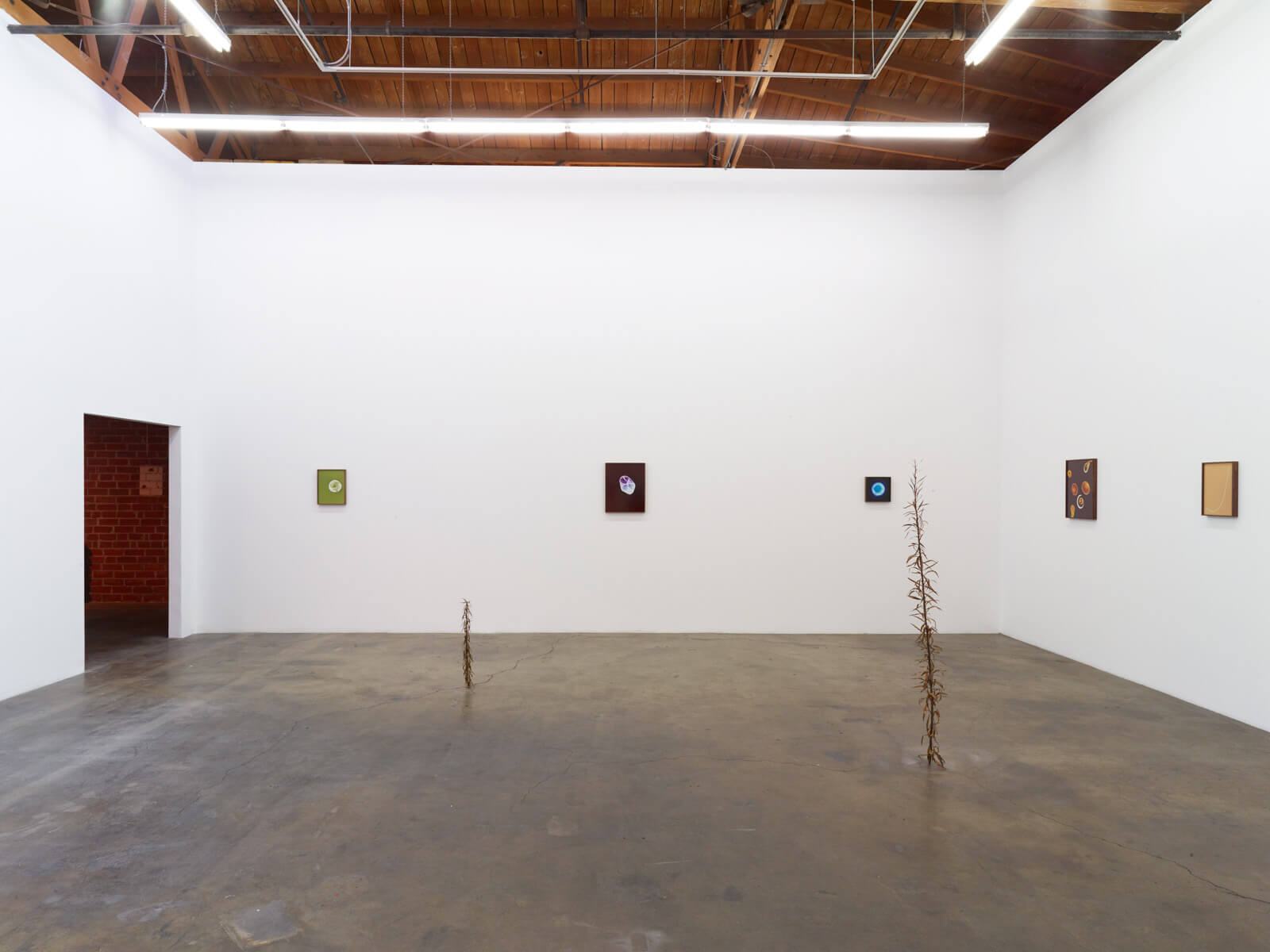 2_kelly-akashi-being-as-a-thing-installation-view
