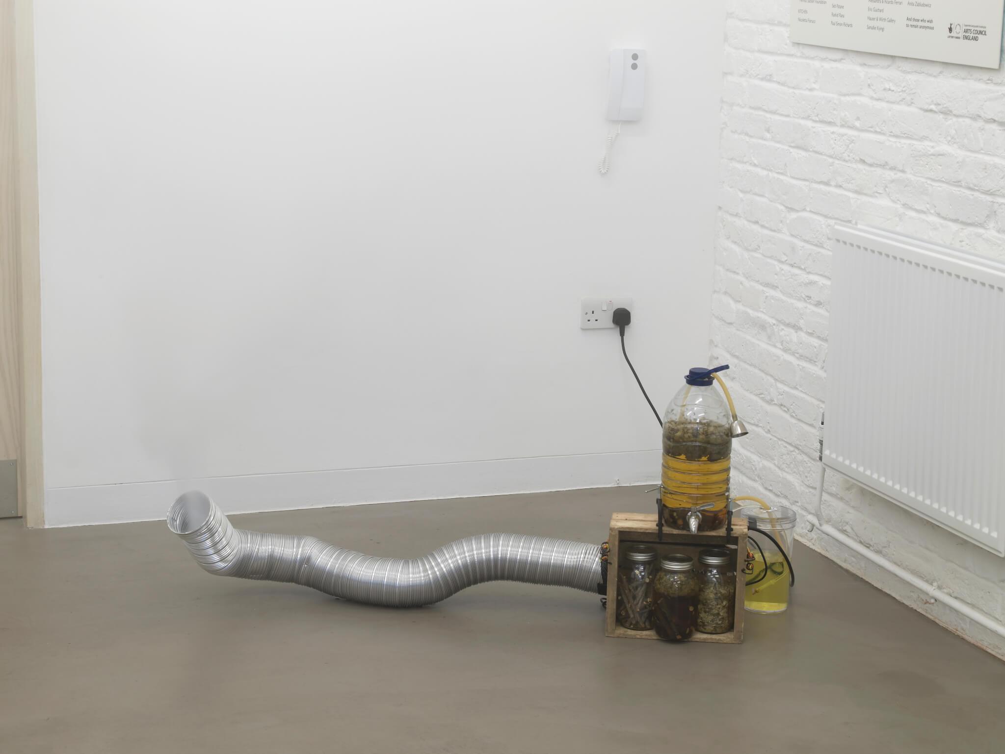 hormonal-fog-machine