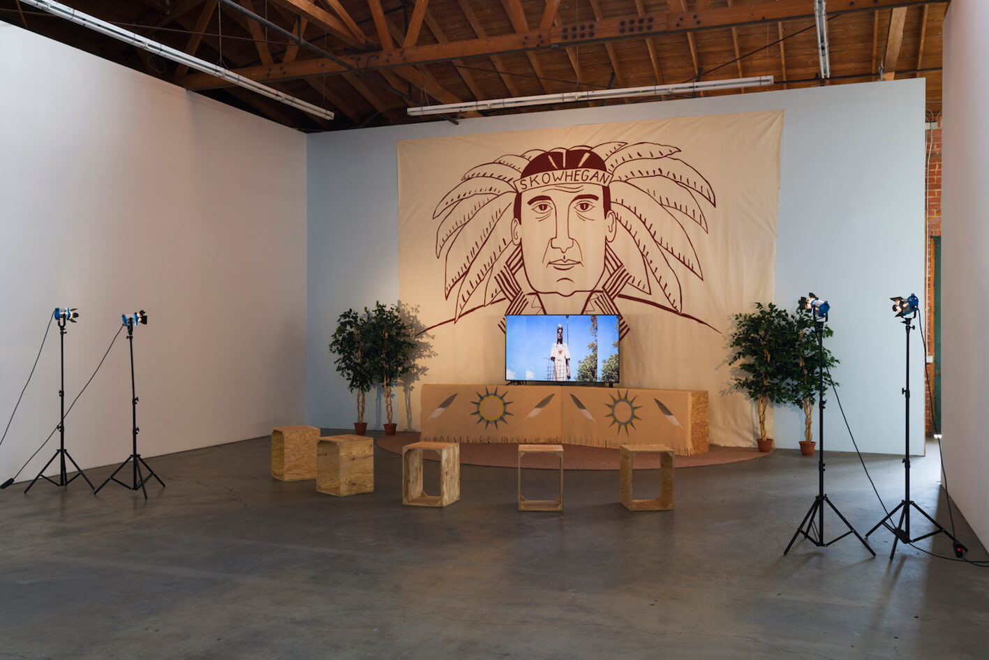 Yoshua Okón, The Indian Project, installation view, Ghebaly Gallery, 2018_2