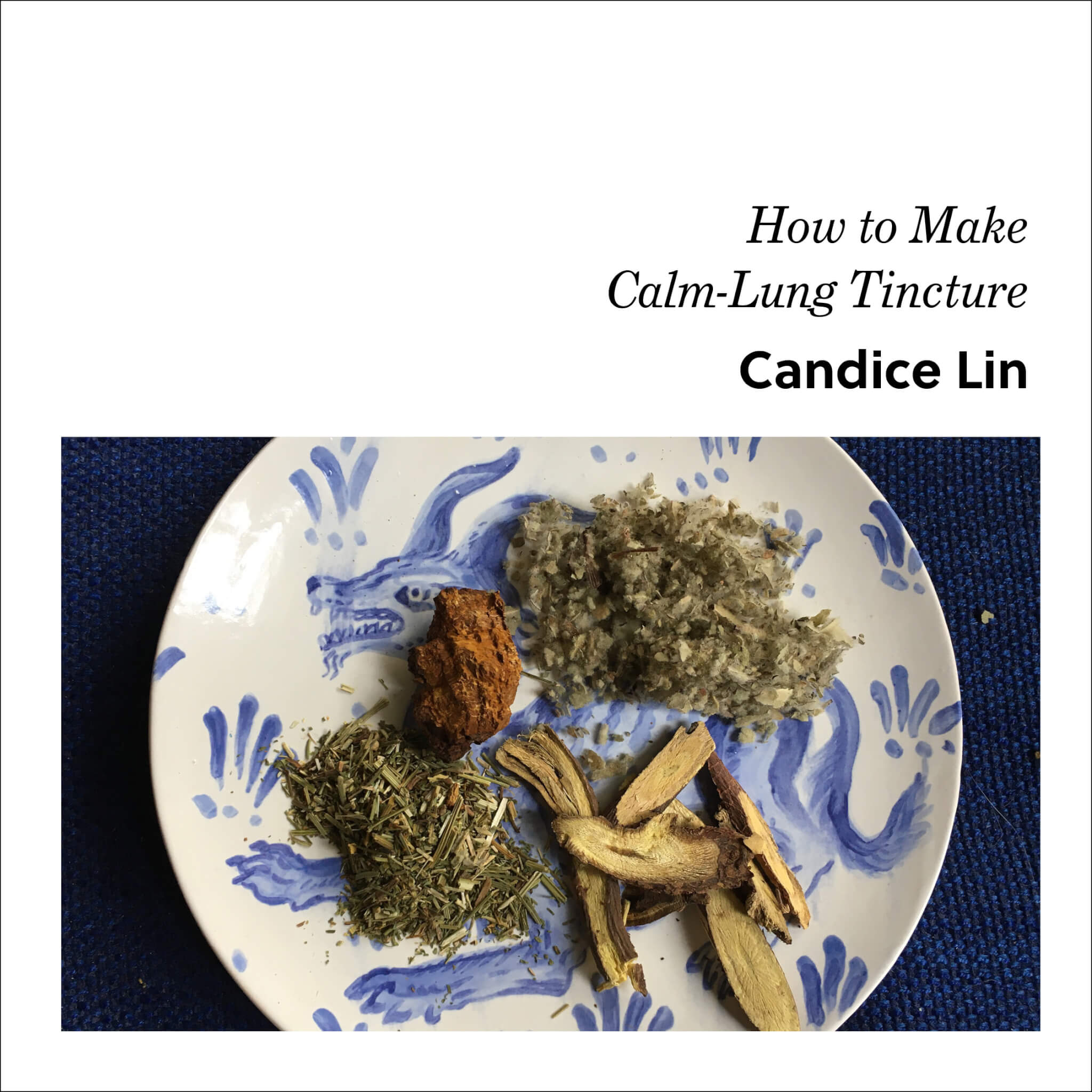 Week 1: Candice Lin