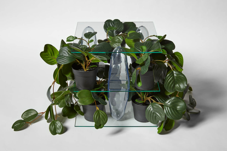 Jackson, Shelving Unit (Plants), 2020 (PJ 20.018) A