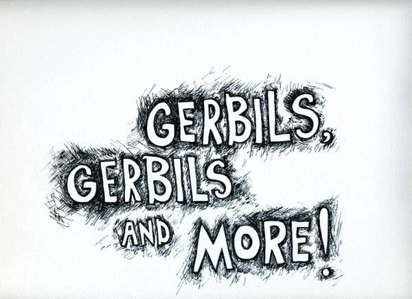 25_gerbils
