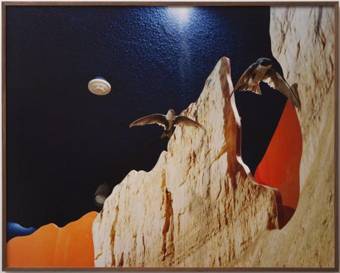 nightbirds_0