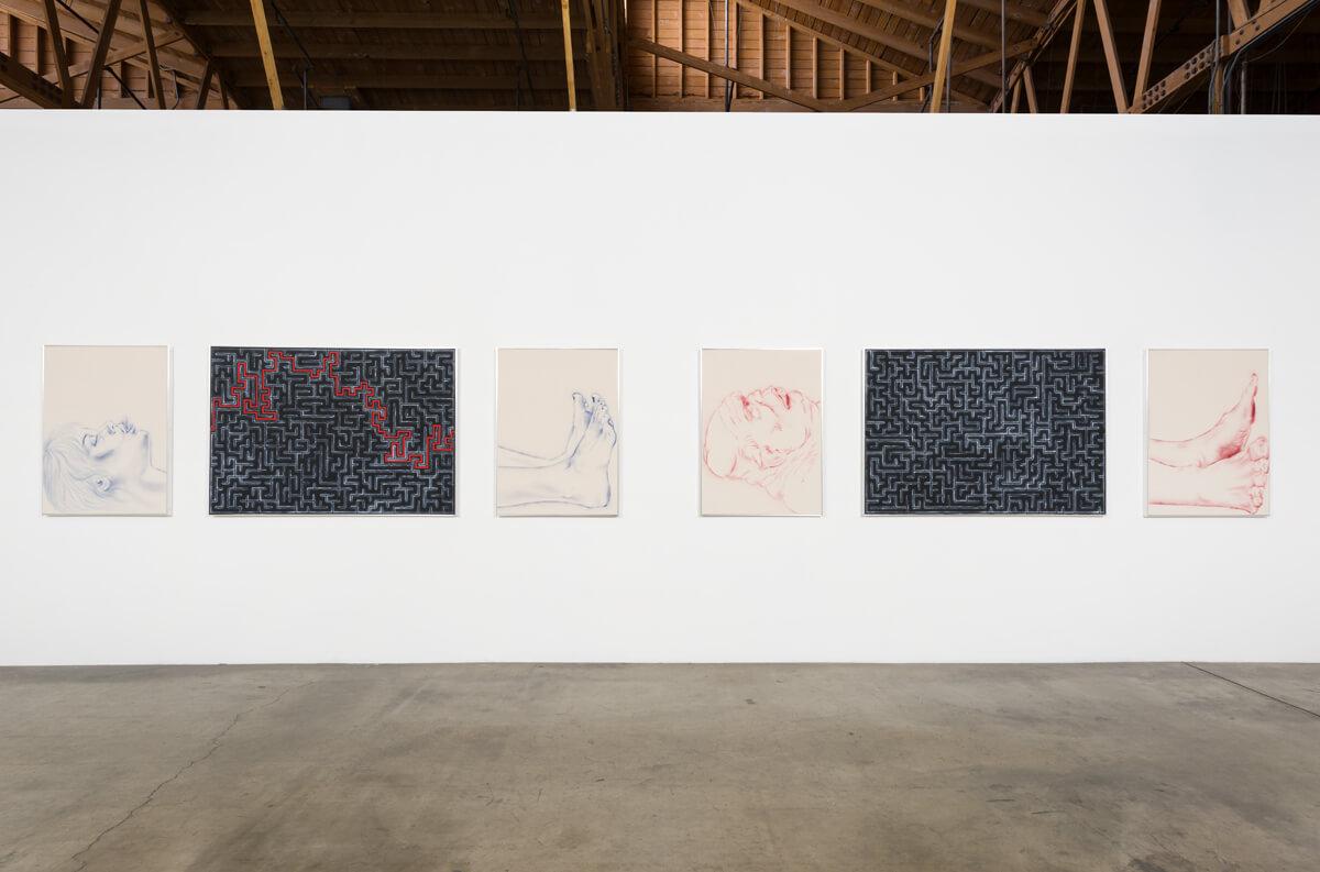 2_installation-view-zoe-barcza-dr-awkward-ghebaly-gallery