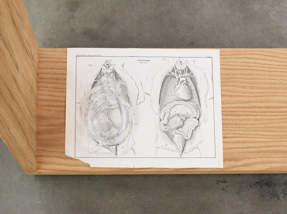 Akashi, Body Complex, 2019 (KA 19.016) H