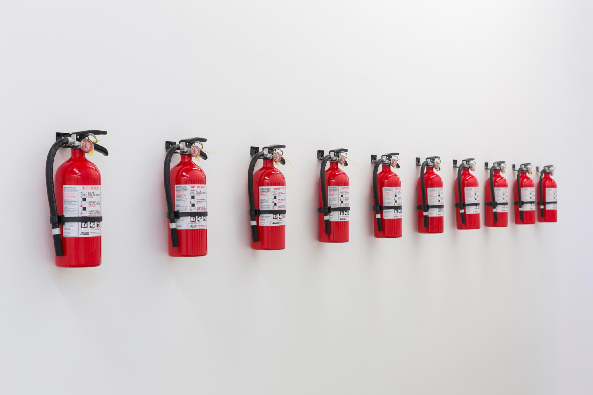 Balula, One Fire Extinguisher, One Artist, 2014 (DBU 14.003) B