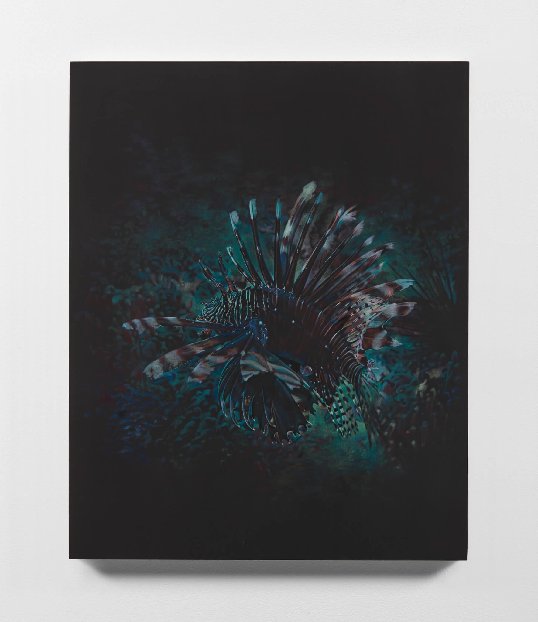 Mann, Black Lionfish, 2020 (BM 20.002) A
